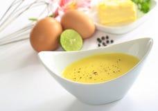 蛋黄奶油酸辣酱调味汁 免版税图库摄影