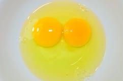 蛋黄 免版税库存照片