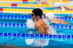 蛙泳游泳者 免版税库存图片