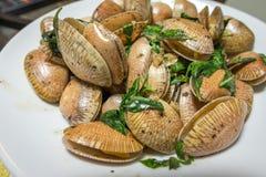 蛤蜊与蓬蒿的油煎的辣椒酱 免版税库存照片