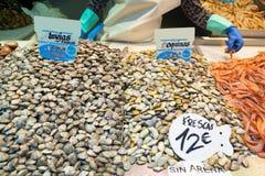 蛤蜊和壳在鱼市上 免版税库存照片