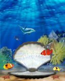 蛤蜊美人鱼 库存照片