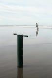 蛤蜊铁锹 图库摄影
