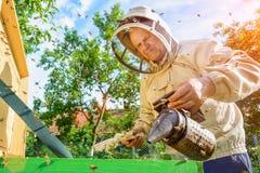 蜂农与蜂和蜂箱一起使用在蜂房 养蜂 库存照片