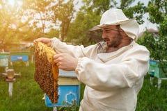 蜂农与蜂和蜂箱一起使用在蜂房 养蜂 免版税图库摄影