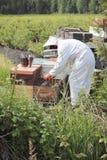 蜂农在工作 免版税图库摄影