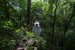 蜂农在森林里 免版税图库摄影
