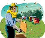 蜂农照料他的蜂房 免版税图库摄影