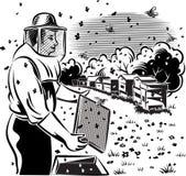蜂农照料他的蜂房 库存图片