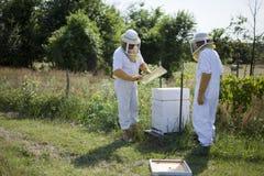 蜂农蜂蜜 库存图片
