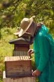 蜂农画蜂窝 库存照片