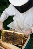 蜂农#1 免版税图库摄影