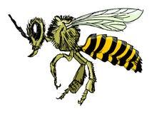 蜂剪影  免版税库存图片