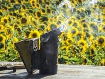 蜂吸烟者 图库摄影