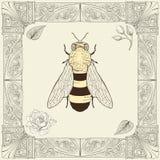蜂和玫瑰色图画 皇族释放例证