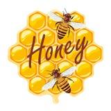 蜂和蜂窝 也corel凹道例证向量 免版税库存照片