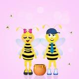 蜂夫妇配偶 库存照片