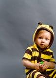 蜂子项 免版税库存照片