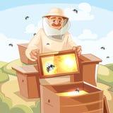 蜂房传染媒介例证 库存照片