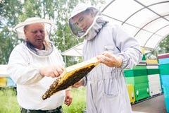 蜂房的两名工作者 免版税库存图片