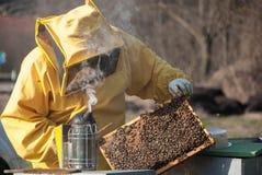 从蜂房的蜂农 图库摄影