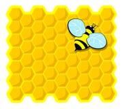 蜂梳子休息的顶层 皇族释放例证