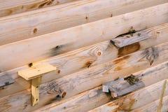 蜂的木房子 在山的本质 库存照片