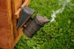蜂的蜂烟 库存图片