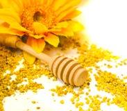 蜂胶粒子蜂蜜滴管背景毛毛雨木匙子 图库摄影