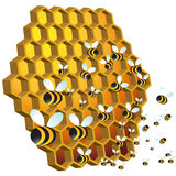 蜂蜂蜜 免版税库存图片