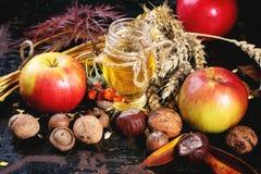蜂蜜、坚果和苹果 免版税图库摄影