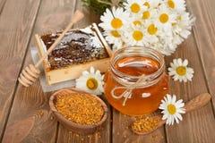 蜂蜜、春黄菊和花粉 库存图片