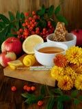 蜂蜜、柠檬、花楸浆果和温度计 对待季节性寒冷的概念 库存照片