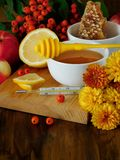 蜂蜜、柠檬、花楸浆果和温度计 对待季节性寒冷的概念 免版税库存图片