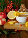 蜂蜜、柠檬、花楸浆果和温度计 对待季节性寒冷的概念 免版税库存照片