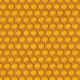 蜂蜜例证 免版税库存照片