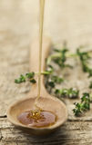 蜂蜜匙子 库存照片