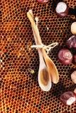 蜂蜜和坚果 图库摄影