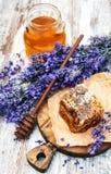 蜂蜜和淡紫色 库存图片