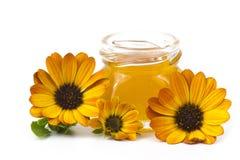 蜂蜜和花 免版税库存图片