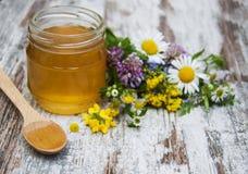 蜂蜜和野花 库存图片