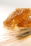 蜂蜜和麦子 图库摄影
