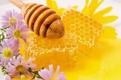 蜂蜜在液体蜂蜜的蜂蜜梳子与花和一把木匙子在阳光下 免版税图库摄影