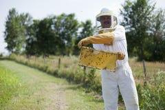 蜂蜜我显示 免版税库存照片