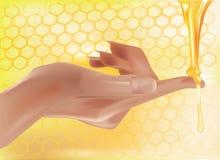 蜂蜜手传染媒介 免版税库存照片