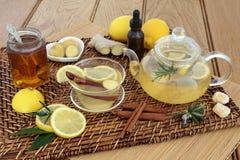 蜂蜜柠檬和香料饮料 库存照片