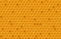 蜂蜜梳子样式 向量例证