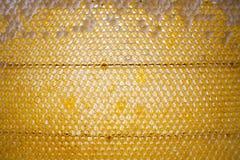 蜂蜜梳子背景或纹理 免版税图库摄影