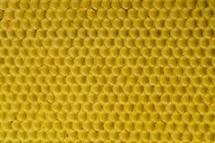蜂蜜梳子金背景纹理自然细胞3 库存图片