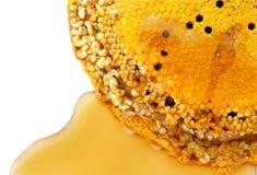 蜂蜜梳子 免版税图库摄影